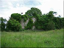 R4653 : Castles of Munster: Ballyculhane, Limerick (3) by Garry Dickinson