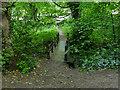 SE3137 : Footbridge in Gledhow Valley Woods by Stephen Craven
