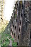 TQ5942 : Southborough Viaduct by N Chadwick