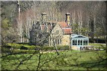 TQ6044 : Lake Cottage, Somerhill Park by N Chadwick