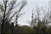 TQ6044 : Pembury Transmitter by N Chadwick
