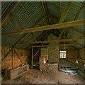 NH8249 : Derelict building interior - Dallaschyle Wood by valenta