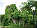 R6662 : Castles of Munster: Castle Connell, Limerick (1) by Garry Dickinson