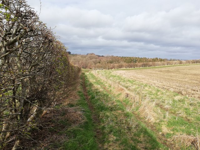 Footpath along straight hedge a little east of Red Hemmels