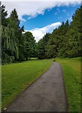 SD9008 : Tandle Hill Country Park by Peter McDermott