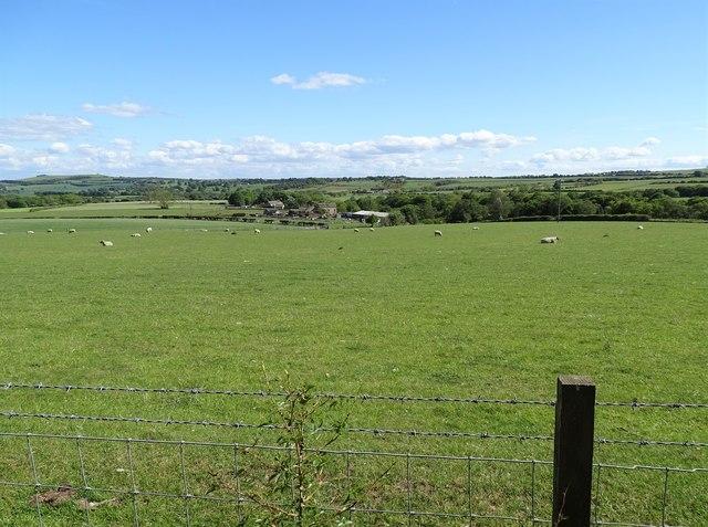 Open fields beside the railway path
