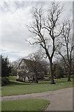 SE5952 : The Hospitium, Museum Gardens by habiloid
