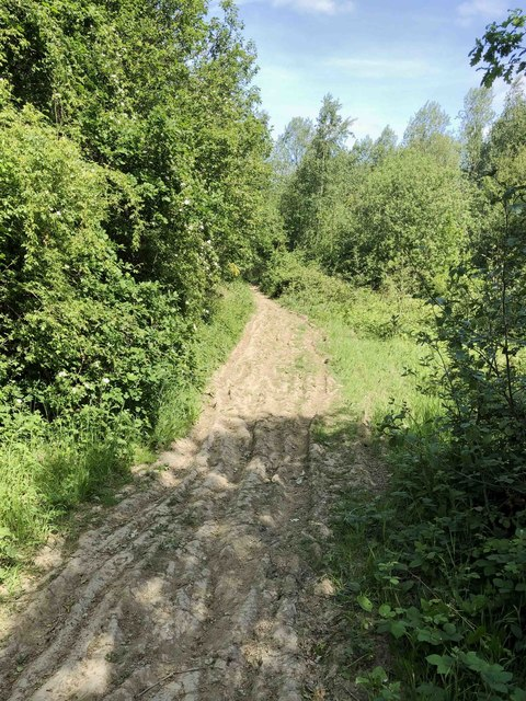 Rutted track on site of main railway line
