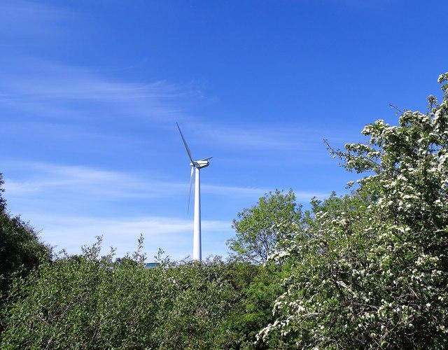 Solitary wind turbine