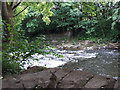 SE2436 : Remains of St Helen's Weir on the River Aire by Stephen Craven