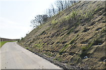 TQ6044 : Slope stabilization by cycle path by N Chadwick