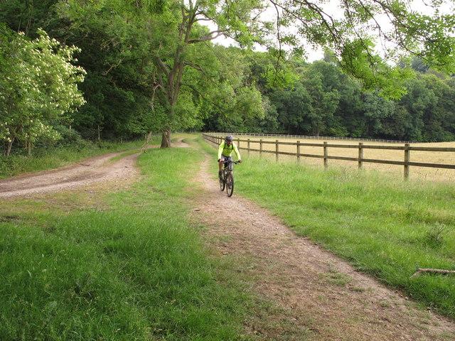 Cyclist on bridleway near Turville Park Farm