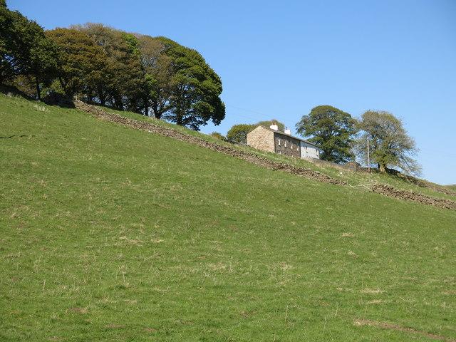 Fields below Far Hilltop (2)