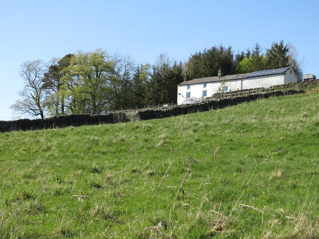 Rough pastures below Banks Farm