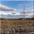 NH6736 : New 400kv Pylon Line by valenta