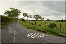 H5472 : Roeglen Road, Bracky by Kenneth  Allen