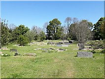 NZ2568 : The churchyard of Gosforth Parish Church by Graham Robson