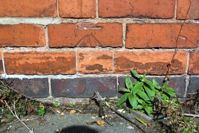 Benchmark on outbuilding of #48 Northumberland Road (Waveley Road face)