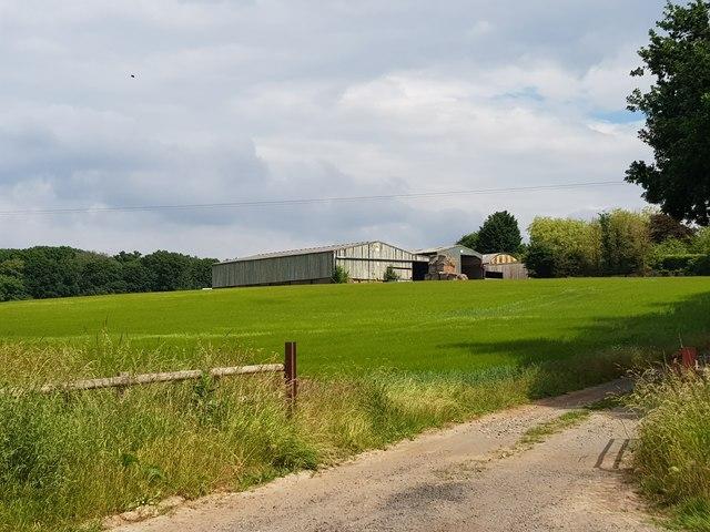 Modern farm buildings near Sankyn's Green