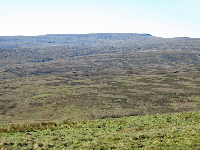 Moorland above Aglionby Beck