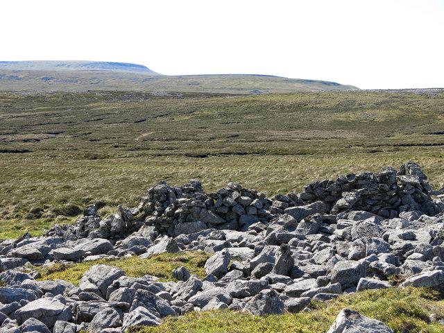 Ruined sheepfold on Melmerby Fell