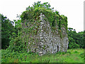 W7660 : Castles of Munster: Aghamarta, Cork (1) by Garry Dickinson