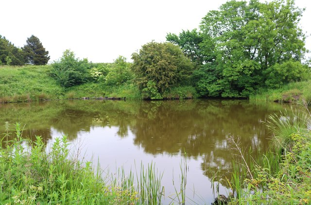 Myreside Pond