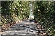 TQ5641 : Stockland Green Rd by N Chadwick