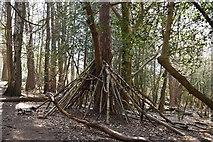TQ5742 : Makeshift hide, Southborough Common by N Chadwick