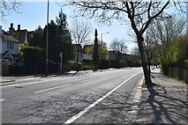 TQ5841 : Empty St John's Road by N Chadwick