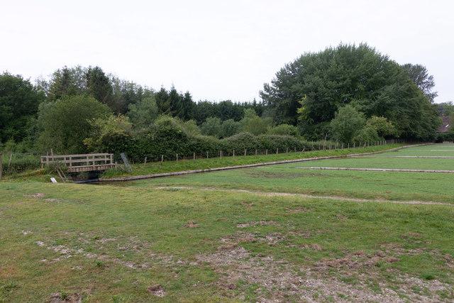 Watercress Beds beside Bedfield Lane