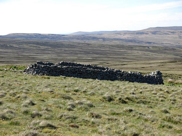Sheepfold below Raehow End
