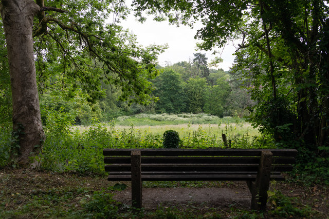 Seat and view towards St. Swithun's church