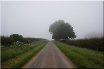 SE9546 : Minor road west of Holme on the Wolds by Ian S