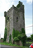 R6147 : Castles of Munster: Williamstown, Limerick (2) by Garry Dickinson