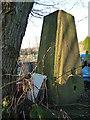 SO9981 : Bartley Farm trig point by Richard Law