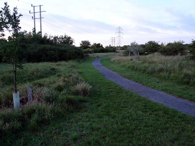 Track round Mareham Pastures