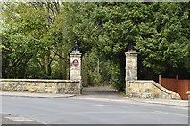 TQ5740 : Gate Posts, Culverden Down by N Chadwick