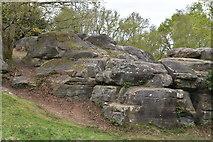 TQ5639 : Toad Rocks by N Chadwick