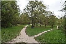 TQ5739 : The Old Racecourse, Tunbridge Wells Common by N Chadwick
