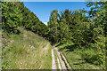 TQ2051 : North Downs Way by Ian Capper