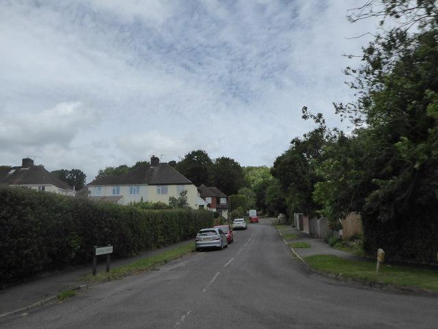 Looking from Oak Tree Lane into Sunvale Avenue