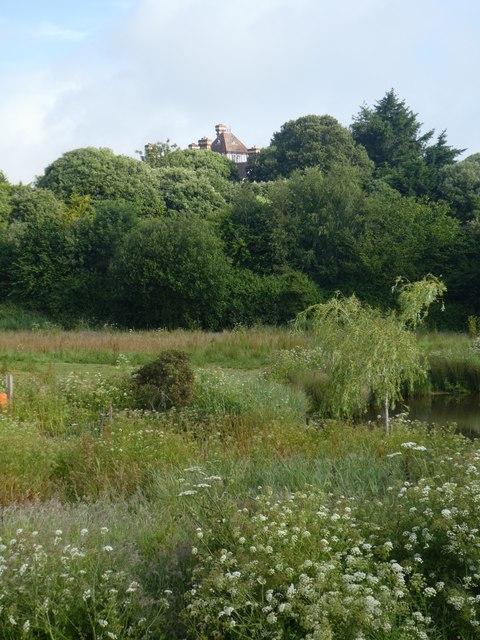 Cockwood Marsh