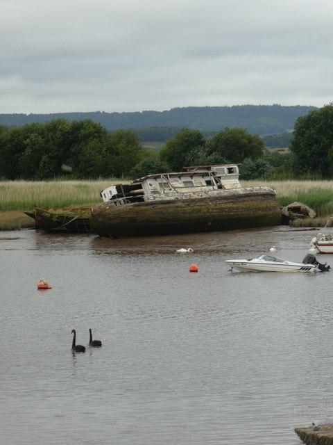 Black swans and hulk, River Exe, Topsham