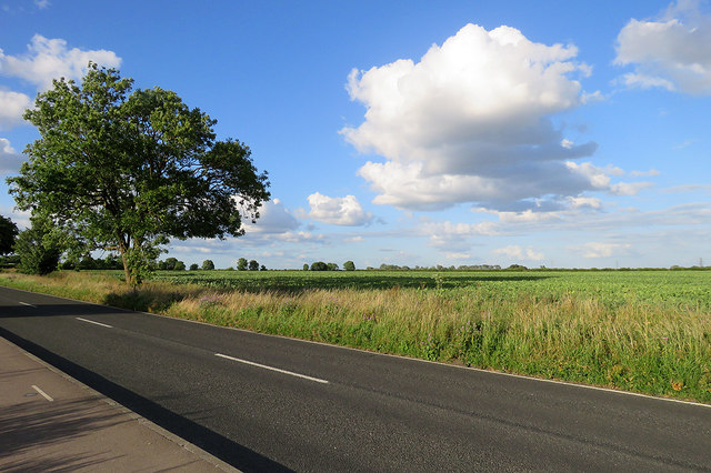 Horningsea Road and a bean field