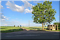 TL4961 : Bus stop at Low Fen Drove Way by John Sutton