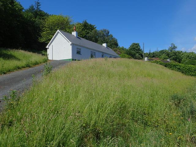 Cottages in Donard Wood