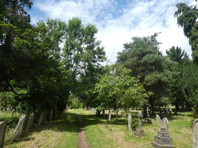 Trees and footpath, Exeter Higher Cemetery