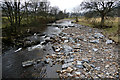 NY8838 : River Wear at East Blackdene by Andy Waddington