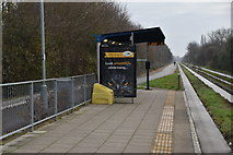 TL4661 : Cambridge Regional College stop, Guided Busway by N Chadwick